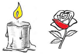 edam-kaars-roos